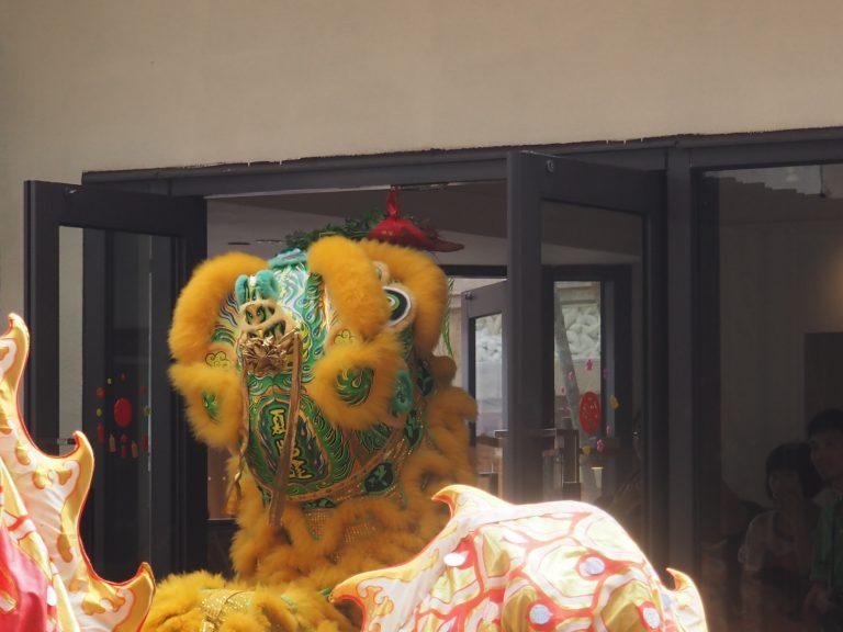 Lion. Lion and Dragon Dance, Ma Wan